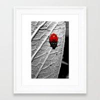 ladybug Framed Art Prints featuring Ladybug by Derek Fleener