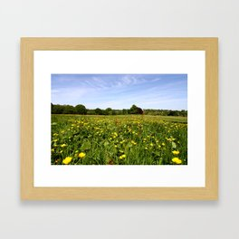 Wildflowers On Hampstead Heath, London, England Framed Art Print