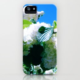 Blue Snowball Branch iPhone Case