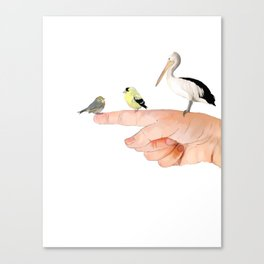 Small Birds Perching on a Hand Canvas Print