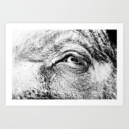 Look at me! Art Print