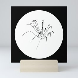 "Fireworks | ""Spider (Skeletal)"" | Black (Circle ver.) | [D0949~03_015] Mini Art Print"