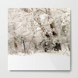 Snowed In Metal Print