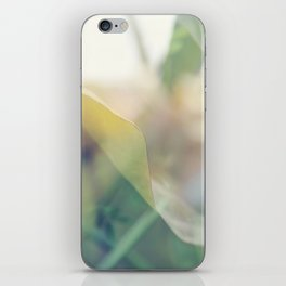 Paradise 2 iPhone Skin
