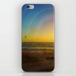 Birds Seeking iPhone Skin