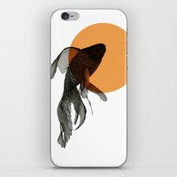 goldfish iPhone & iPod Skins featuring goldfish by morgan kendall