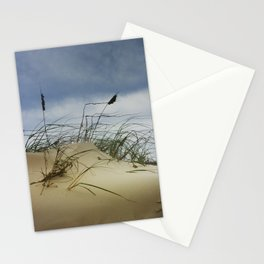 Dune and Beach Grass on Padre Island National Seashore Stationery Cards