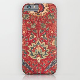 Indian Trellis I // 17th Century Ornate Medallion Red Blue Green Flowers Leaf Colorful Rug Pattern iPhone Case