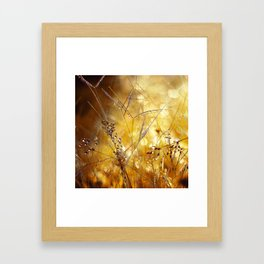 When the Sun Flies Framed Art Print