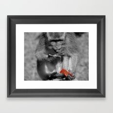 Jam Thief Framed Art Print