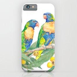 Rainbow Lorikeet Couple - watercolour of Australian parrots iPhone Case