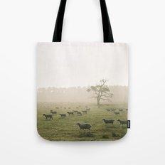 Sunrise burning through heavy fog over field of grazing sheep. Norfolk, UK. Tote Bag