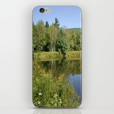Let's Go Outside iPhone & iPod Skin