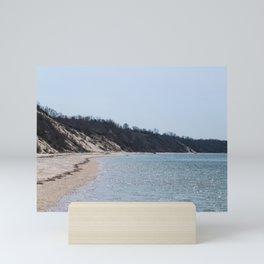 Beach1 Mini Art Print
