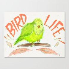 Bird Life Canvas Print