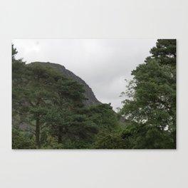 Wales Landscape 4 Cader Idris and Trees Canvas Print
