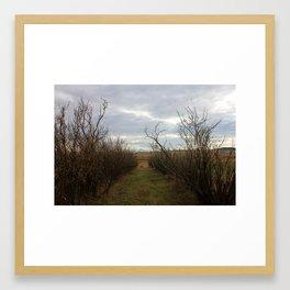 pathways (one) Framed Art Print