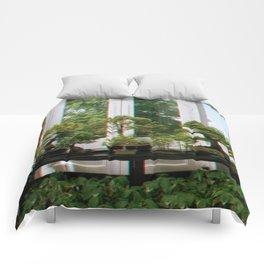 Bonsai Window Comforters