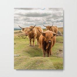 Three Highlanders Metal Print