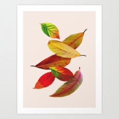 Fall Autumn Feathers Leaves Art Print