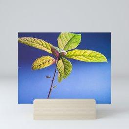 Avocado Sapling Mini Art Print