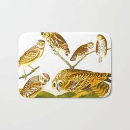 Burrowing Owl Illustration Bath Mat