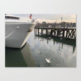 Brooklyn Swan in the Bay Canvas Print