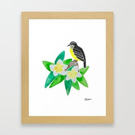 Bananaquit Framed Art Print