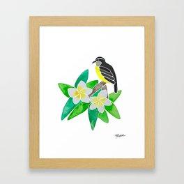 Bananaquit Framed Art Print
