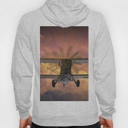 Loud Planes Fly Low Hoody