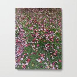 Fall Patterns Metal Print