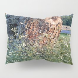 The Tree At Sunset Pillow Sham
