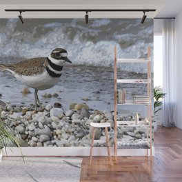 Shore Bird Wall Mural