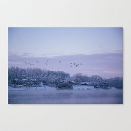 Winter in Illinois Canvas Print
