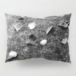 NATURE ART 6 Pillow Sham