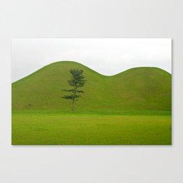 Hill tombs and tree, Korea Canvas Print