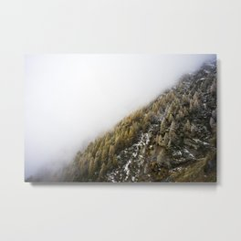 Nørdic Forest No. 3 Metal Print