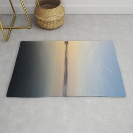 Flight Reflections Rug