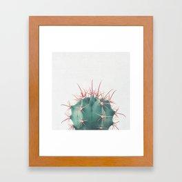 Ferocactus Framed Art Print