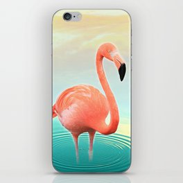 Sunset Flamingo iPhone Skin