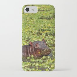 Little Hippo, Africa wildlife iPhone Case
