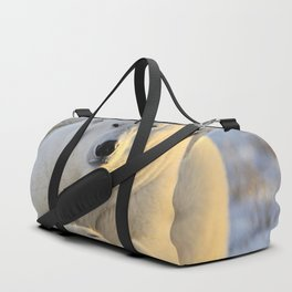 Majestic Giant Adult Polar Ice Bear Sitting On Cold Ground Close Up Ultra HD Duffle Bag