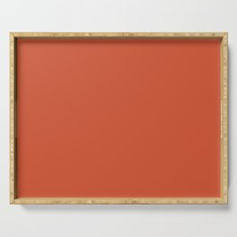 Wizzles 2021 Hottest Designer Shades Collection - Burnt Orange / Clay Serving Tray