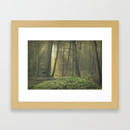 Triple ray of light Framed Art Print