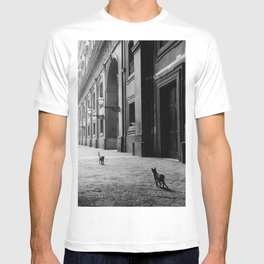 Two French Cats, Paris Left Bank black and white cityscape photograph / photography T-shirt