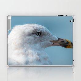 Shorebird in close-up Laptop & iPad Skin