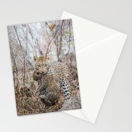 Mother Leopard carrying baby cub Stationery Cards