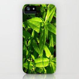 Plants a Plenty iPhone Case
