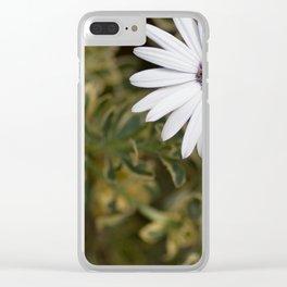 Shasta Daisy Trio Clear iPhone Case