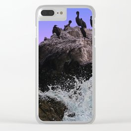 Out Of Danger: Bird Rock Clear iPhone Case
